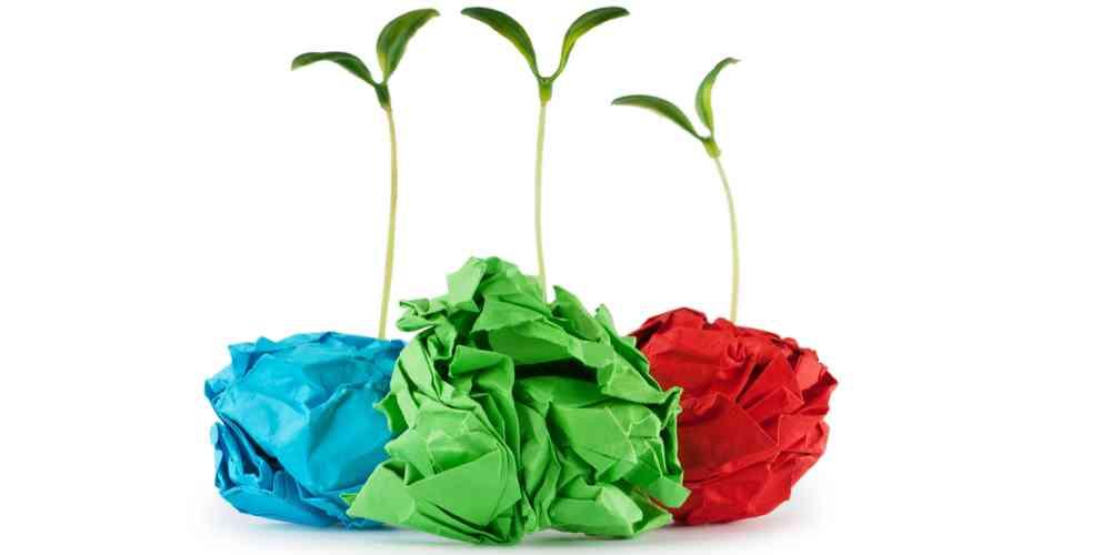 boule de papier pour planter de nouvelles plantes