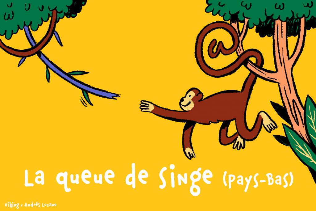 La queue de singe